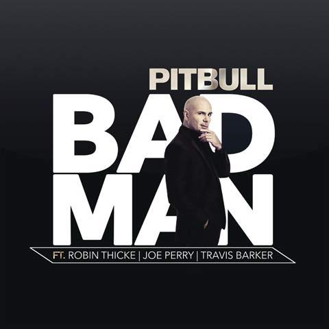 pitbull-bad-man
