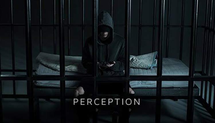 perception-nf