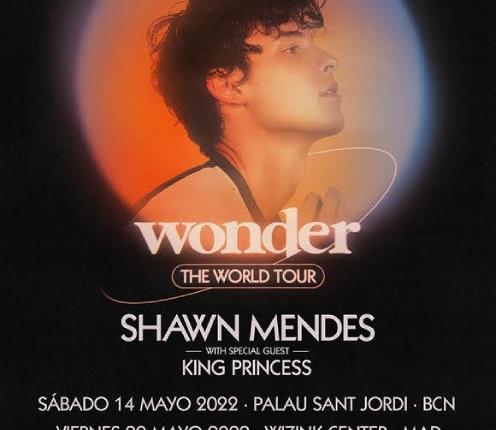 shawn-mendes-wonder